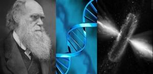 attq Darwin Series