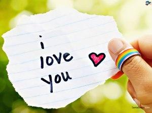 love-160a
